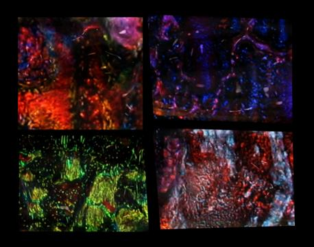 4 Dichroic Glass Images Demonstrating Dichroic Iridescence
